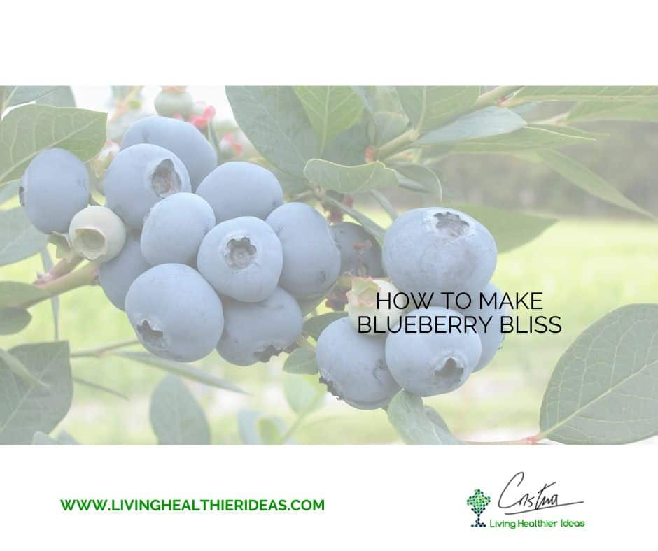 how_to_make_blueberry_bliss1